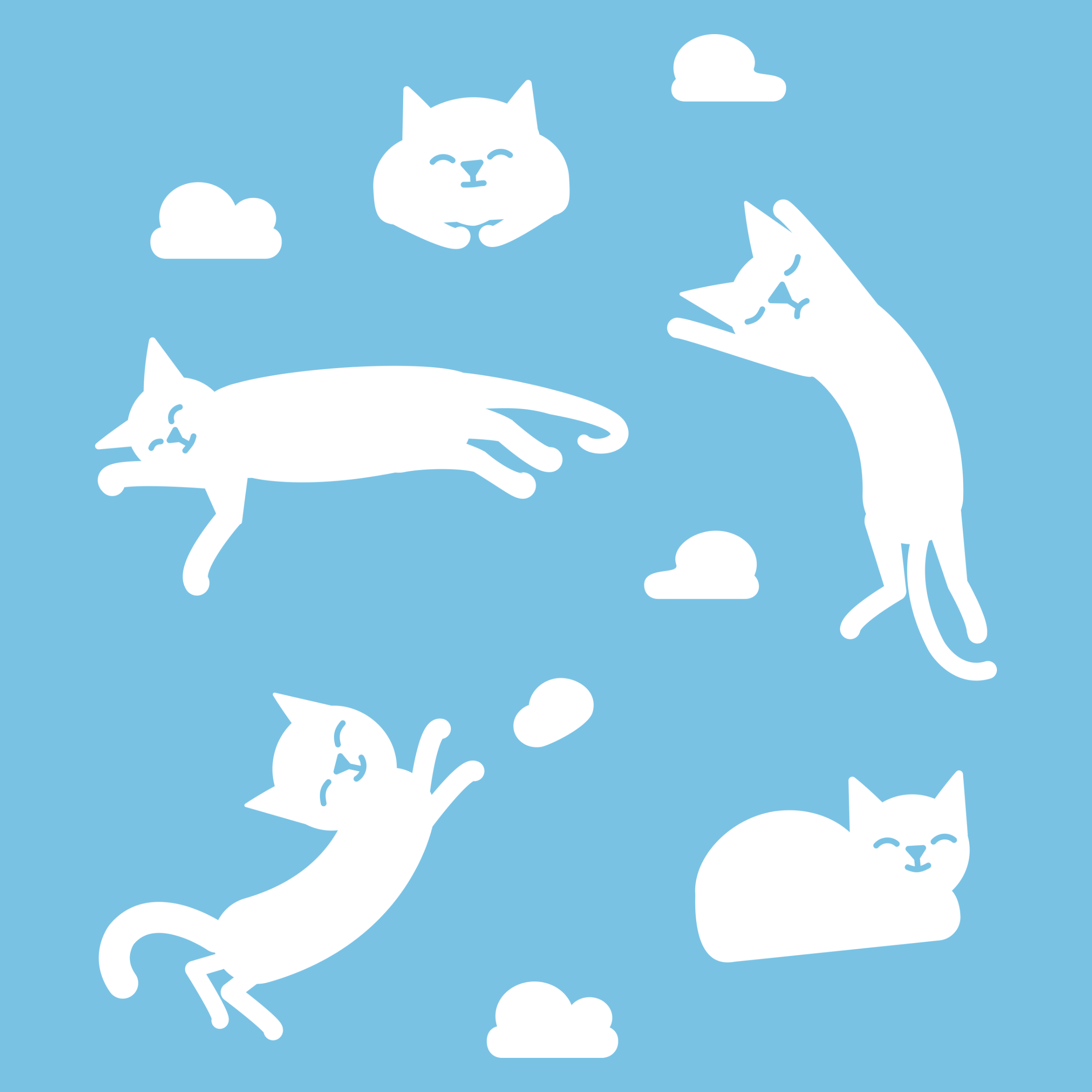 Cat Clouds Detail