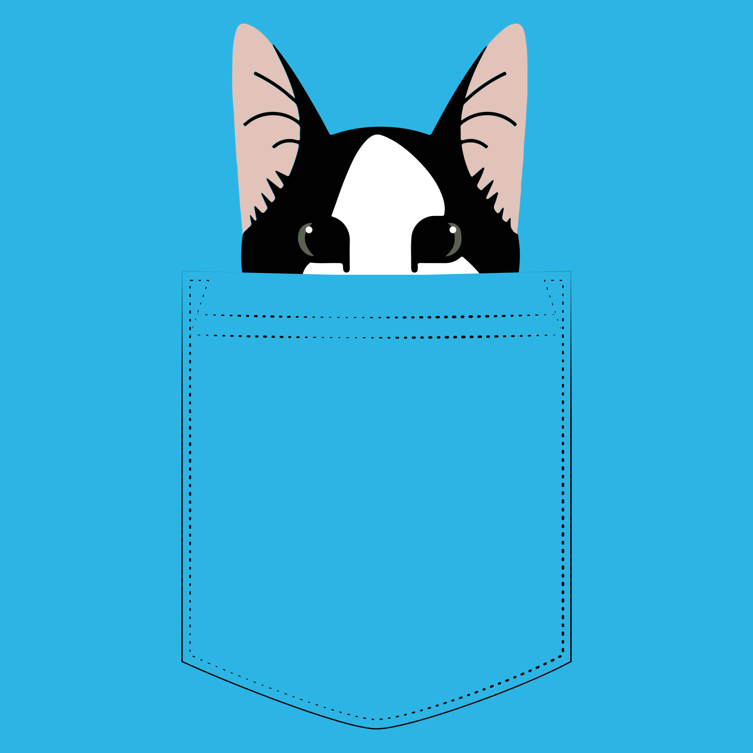 Pocket Cat Detail