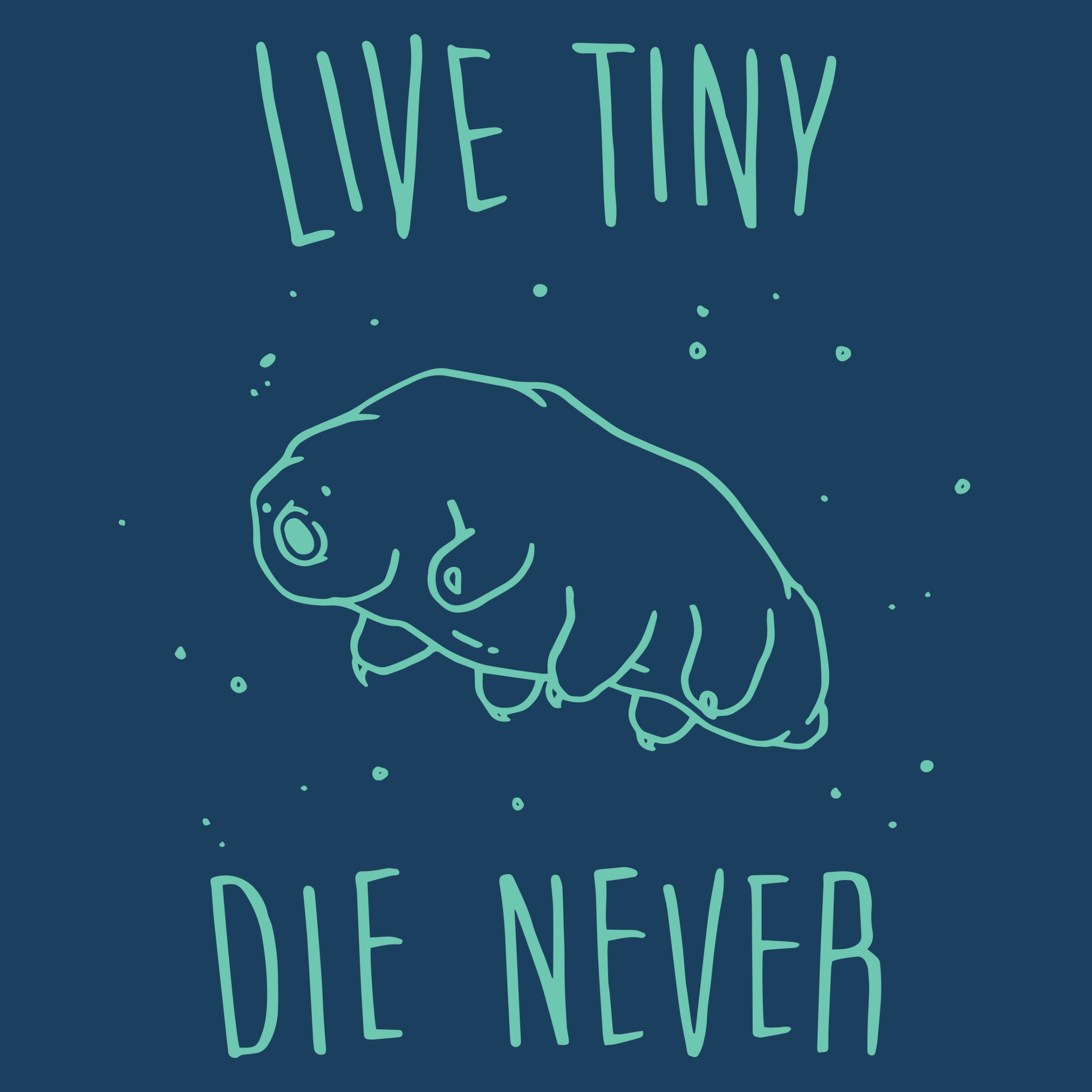 Live Tiny Tardigrade Detail