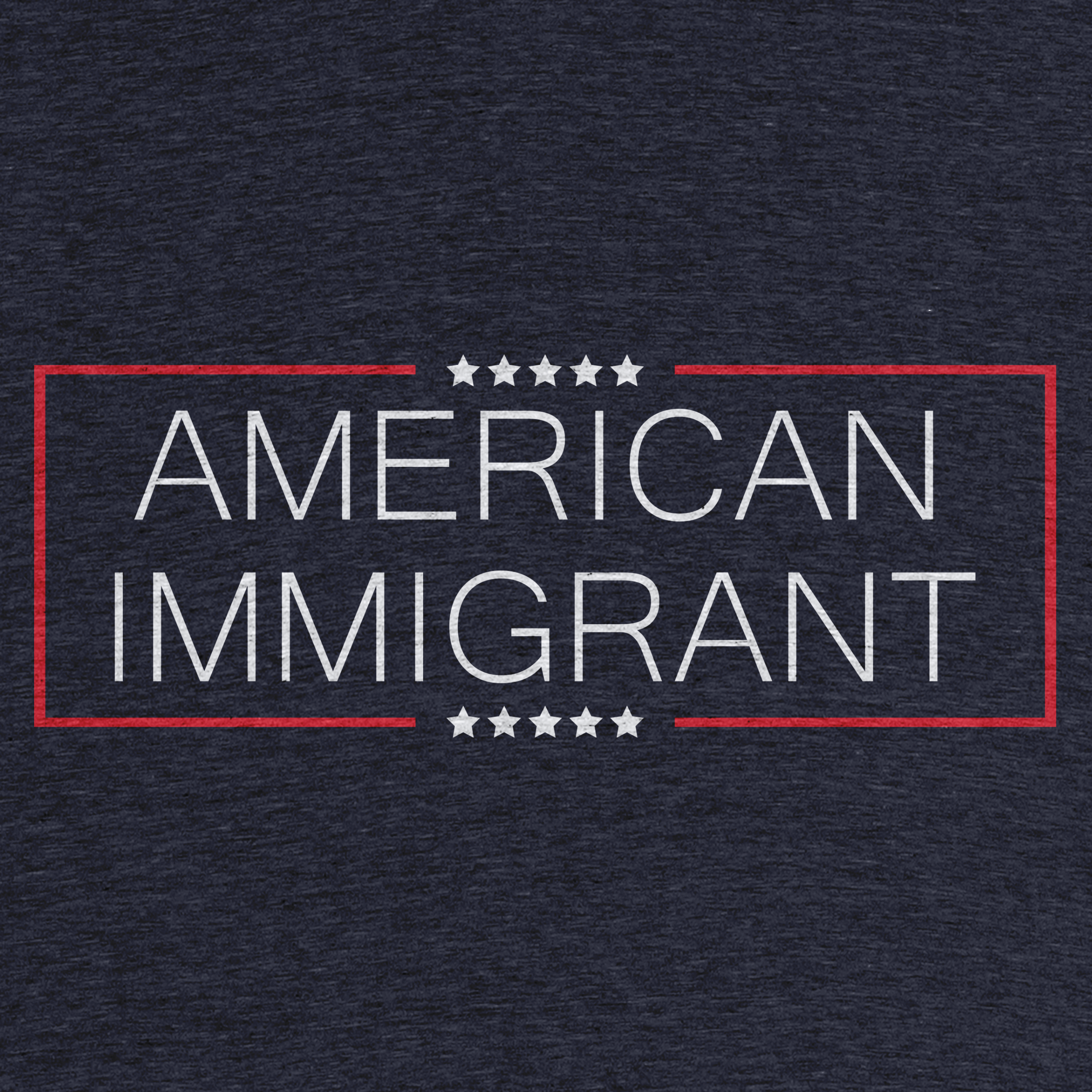 American Immigrant Detail