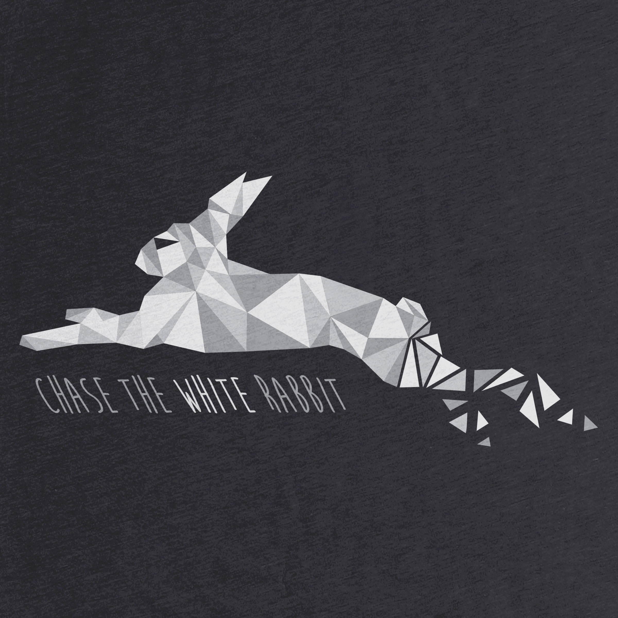 Chase the White Rabbit