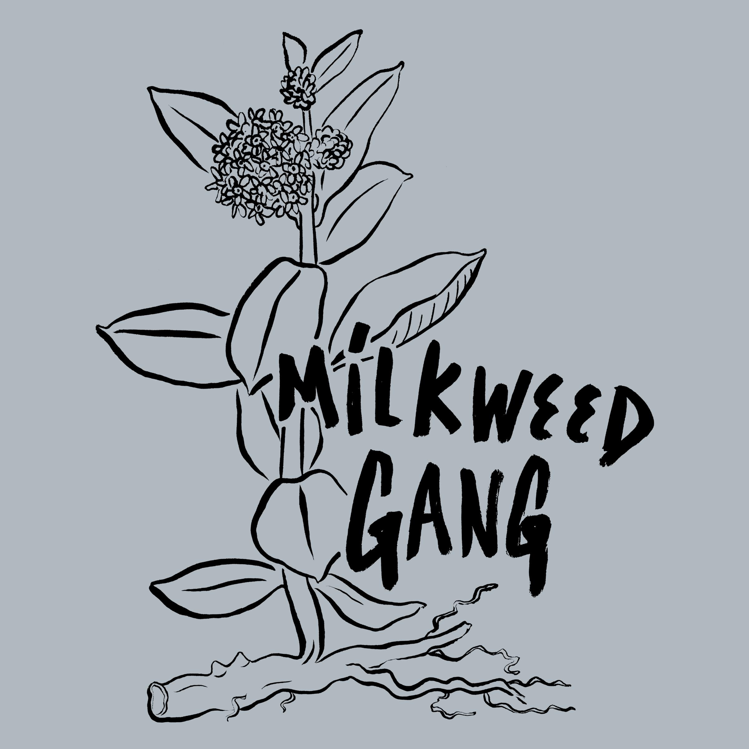 MILKWEED GANG