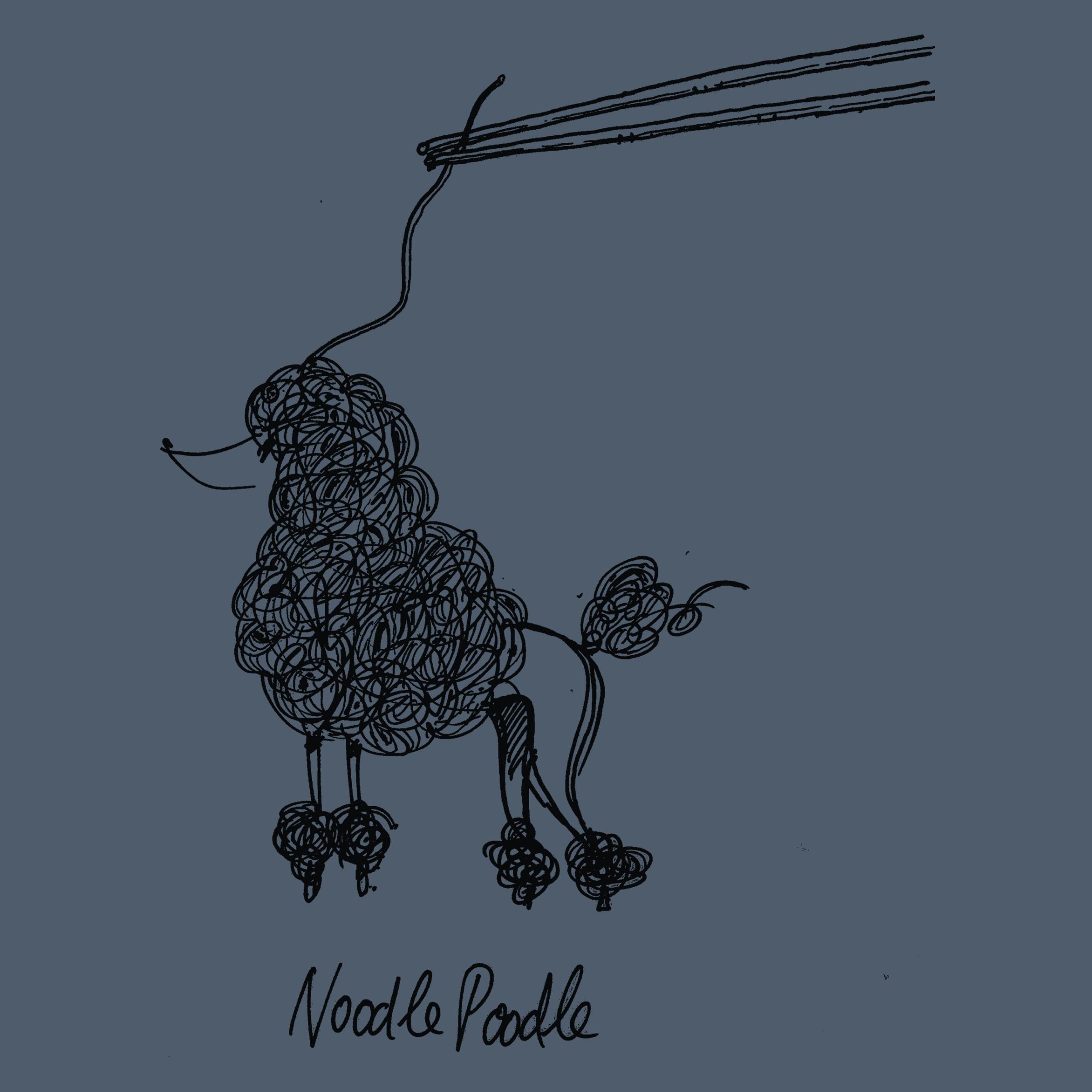 Noodle Poodle