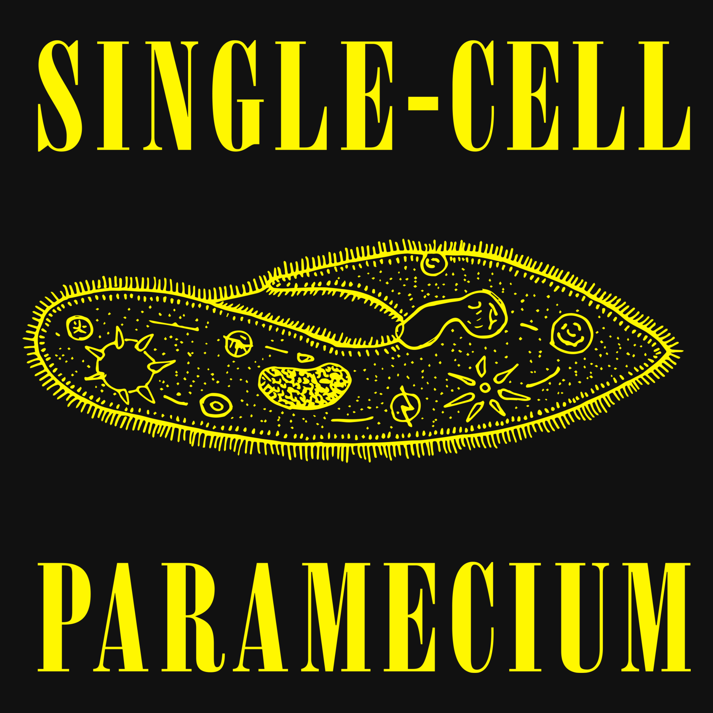 Single-Cell Paramecium