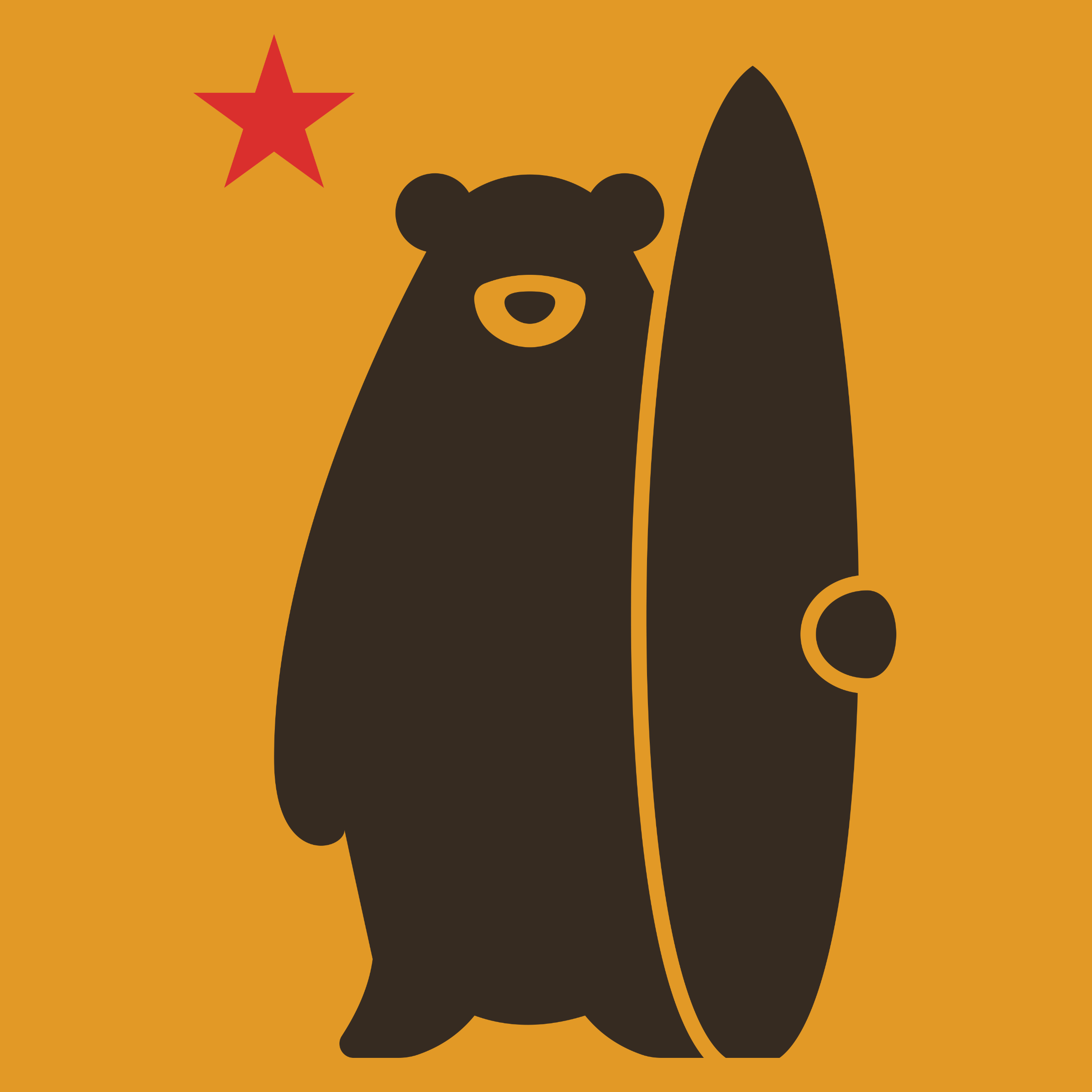 California Surf Bear Detail