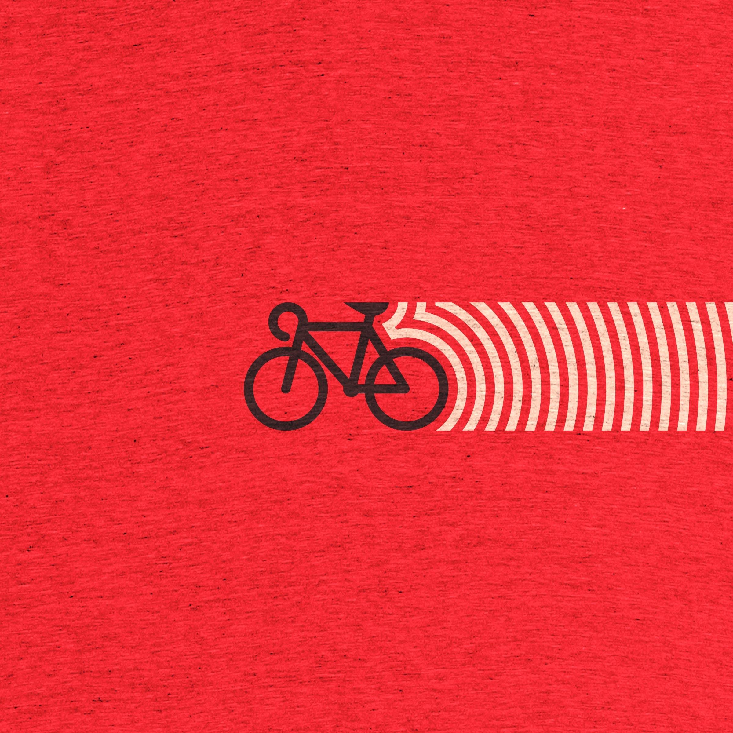 Bici Raya Detail