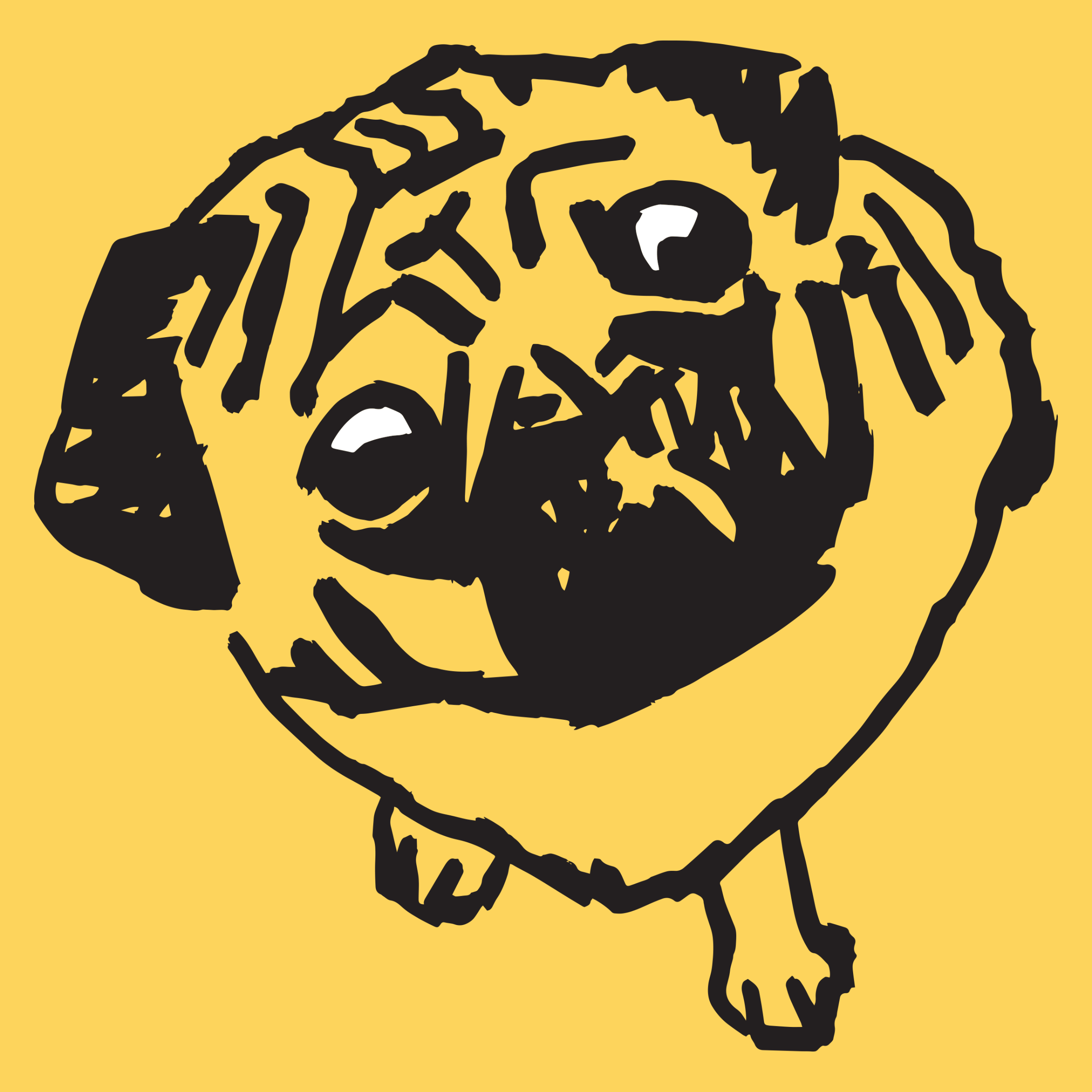 Pugsy Detail
