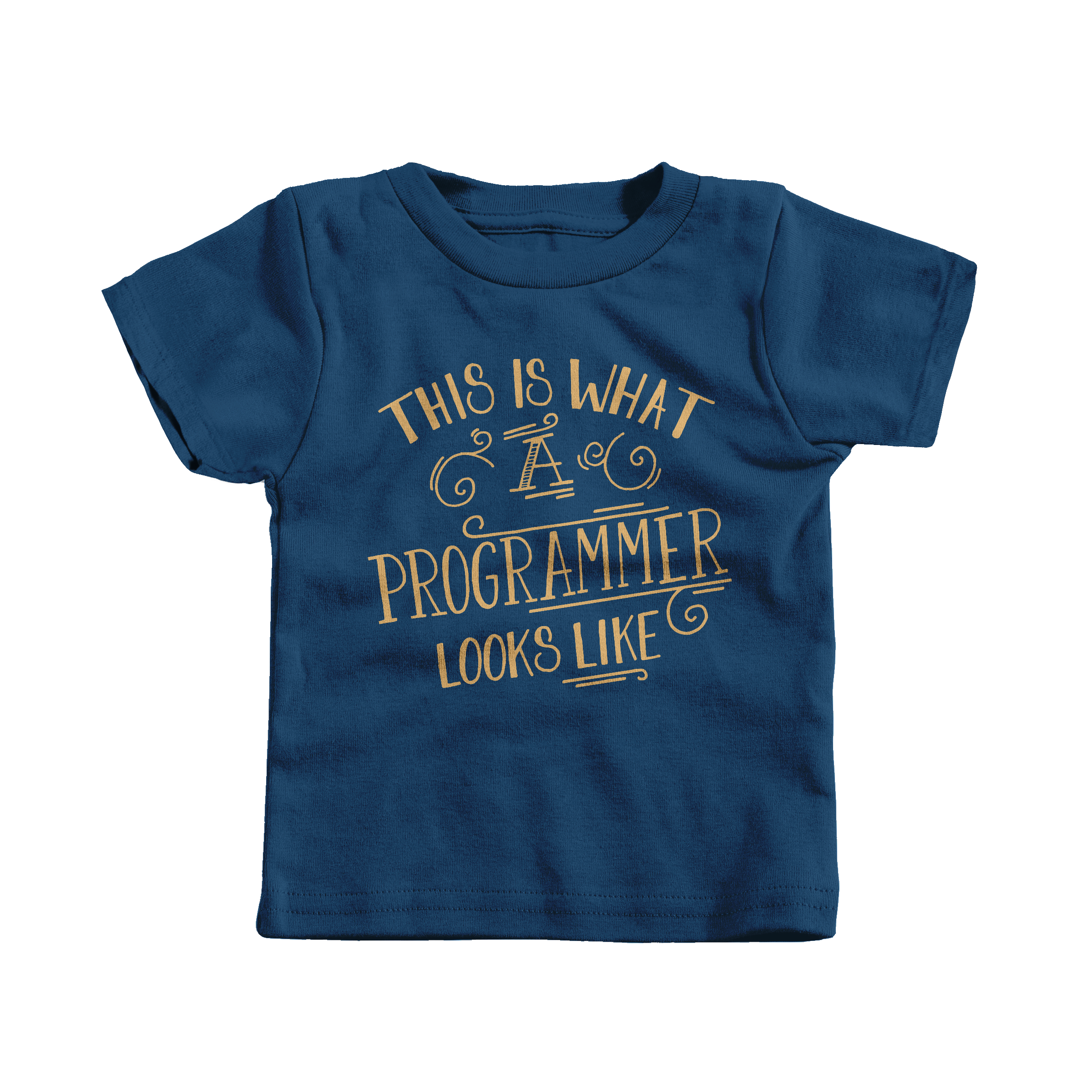 This is What a Programmer Looks Like Navy (T-Shirt)