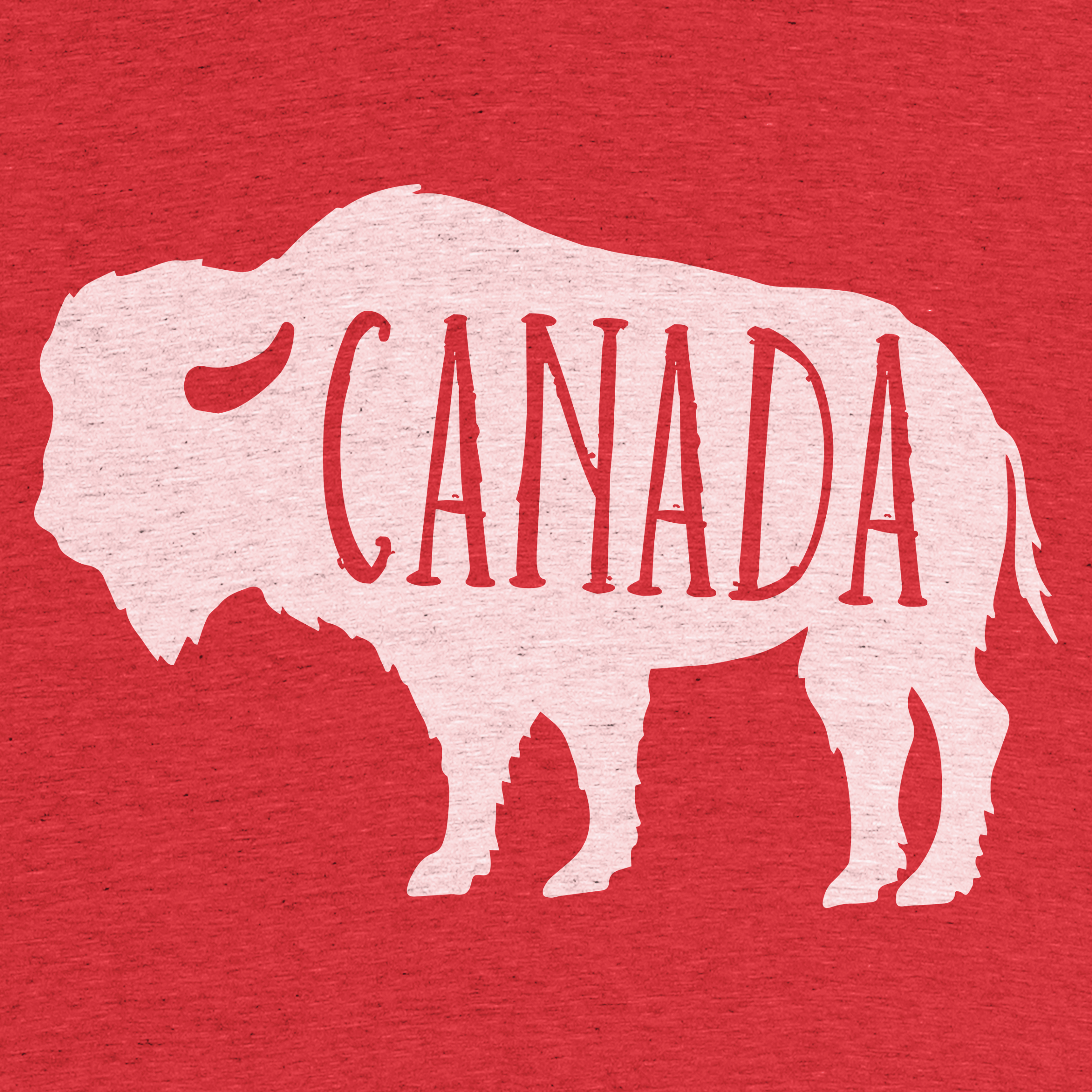 Canadian Bison Detail